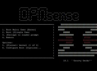 Installing munin-node on OPNsense
