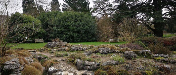 Primordial garden